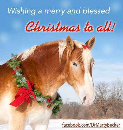 Christmas2013_FBGraphic_v2a