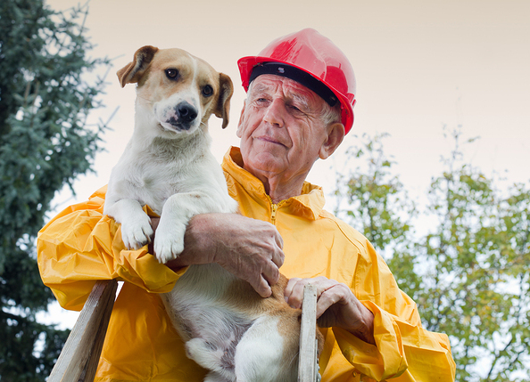 Old man rescuing dog from natural disaster ** Note: Soft Focus at 100%, best at smaller sizes