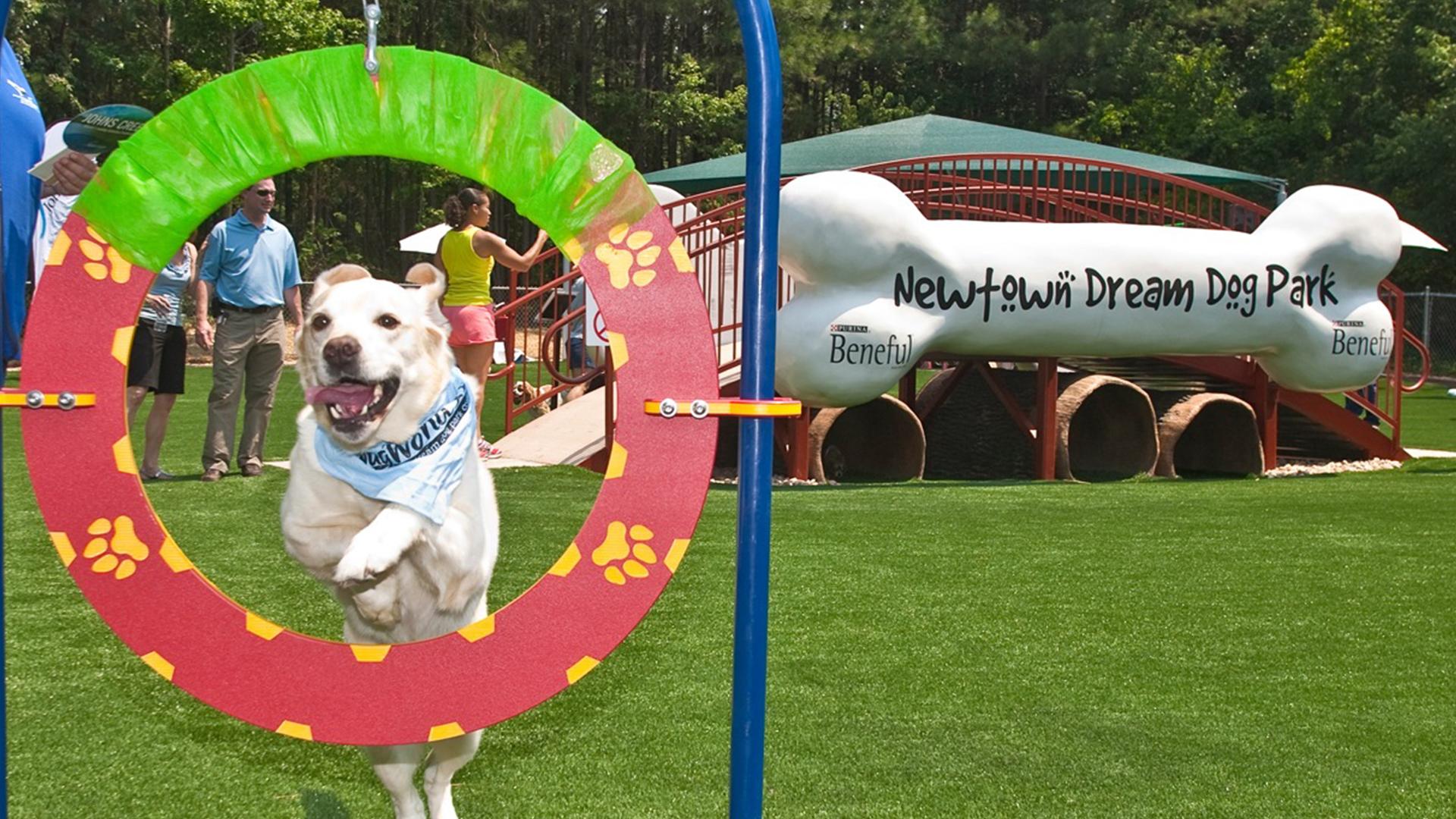 Newtown Dream Dog Park