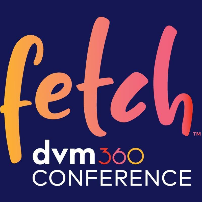 Fetch logo